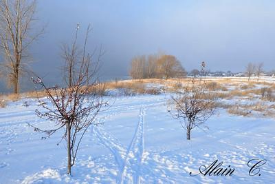 Récolte d'hiver