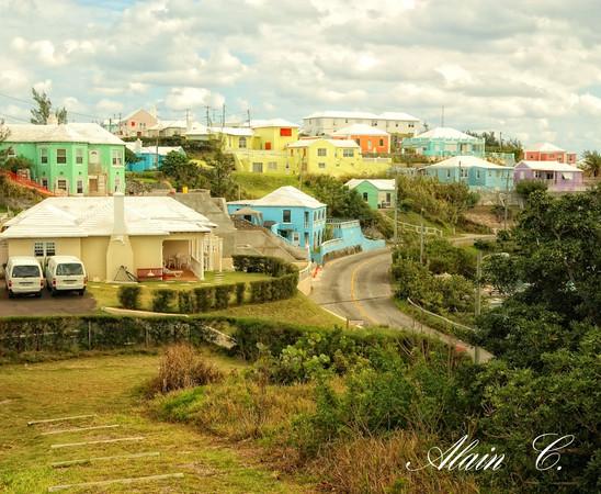 Bermuda colours