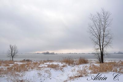 Brume d'hiver