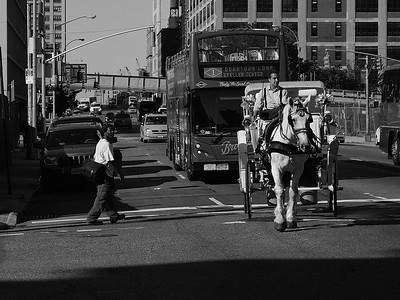 New York is waiking up near W 42nd St / New York se réveille à une intersection sur la 42ième rue, O.